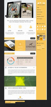 13_bonus_homepage_yellow.__thumbnail