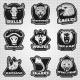 Vintage Team Sport Logos Collection