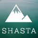 Shasta – A Responsive WordPress Theme For Lifestyle Bloggers (Personal)