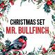 Mr.Bullfinch Watercolor Christmas Set