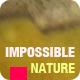 Company Promo - Impossible Nature