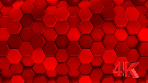VideoHive Animated Honeycombs Changes Color 19652910