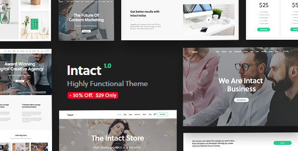 Download Intact - Premium Multi-Purpose WordPress Theme