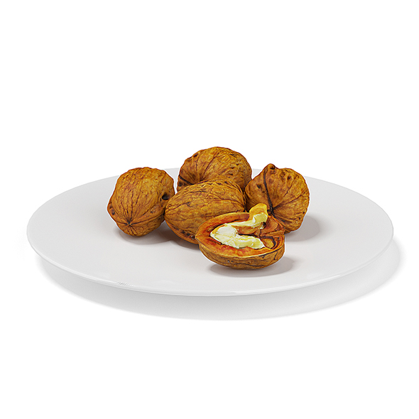 3DOcean Walnuts on White Plate 19660752