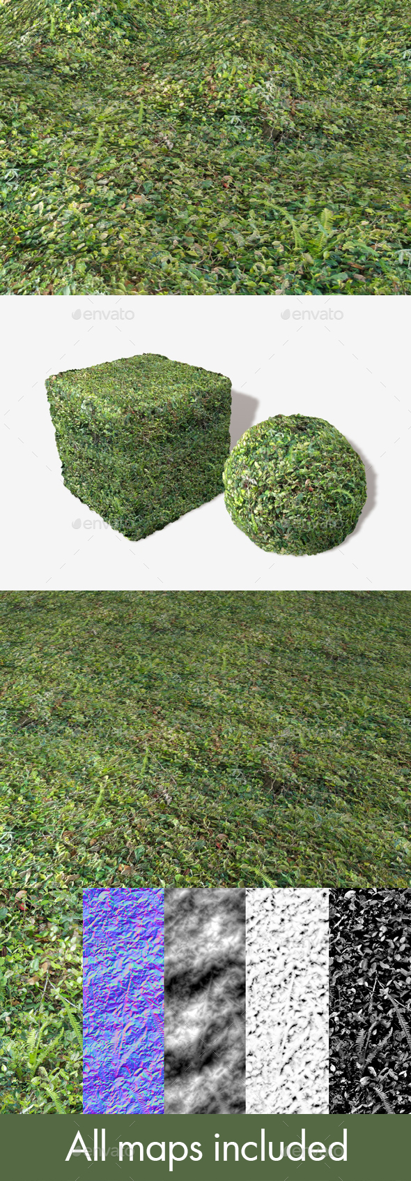 3DOcean Dense Forest Floor Seamless Texture 19671405