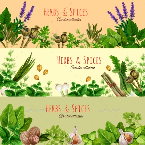 Graphicriver Herbs, Spices and Condiments Cartoon Banner Set 19673079