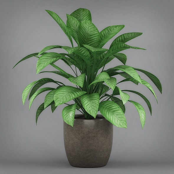 Philodendron Silk Potted Plant - 3DOcean Item for Sale