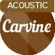 Upbeat Ukulele Acoustic