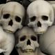 Bones and Skulls Lower Third