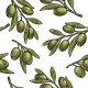 Seamless Pattern Olives on Branch with Leaves