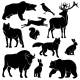 Forest Animals for Wood Design Zoology