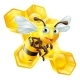 Cartoon Bee and Honey Comb