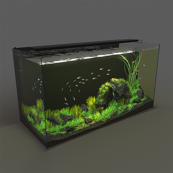 Aquarium rectangle 120l