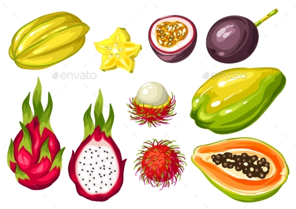 Exotic Tropical Fruits Set. Illustration of Asian