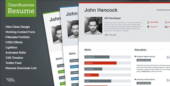 ThemeForest Clean Business Resume 1934660