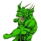 Dragon Mascot Fighting