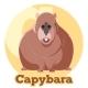ABC Cartoon Capybara
