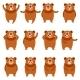 Set of Flat Bear Icons