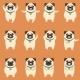 Set of Flat Pug Dog Icons