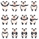 Set of Flat Panda Icons