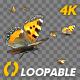 Butterfly Swarm - Eurasian Tortoiseshell