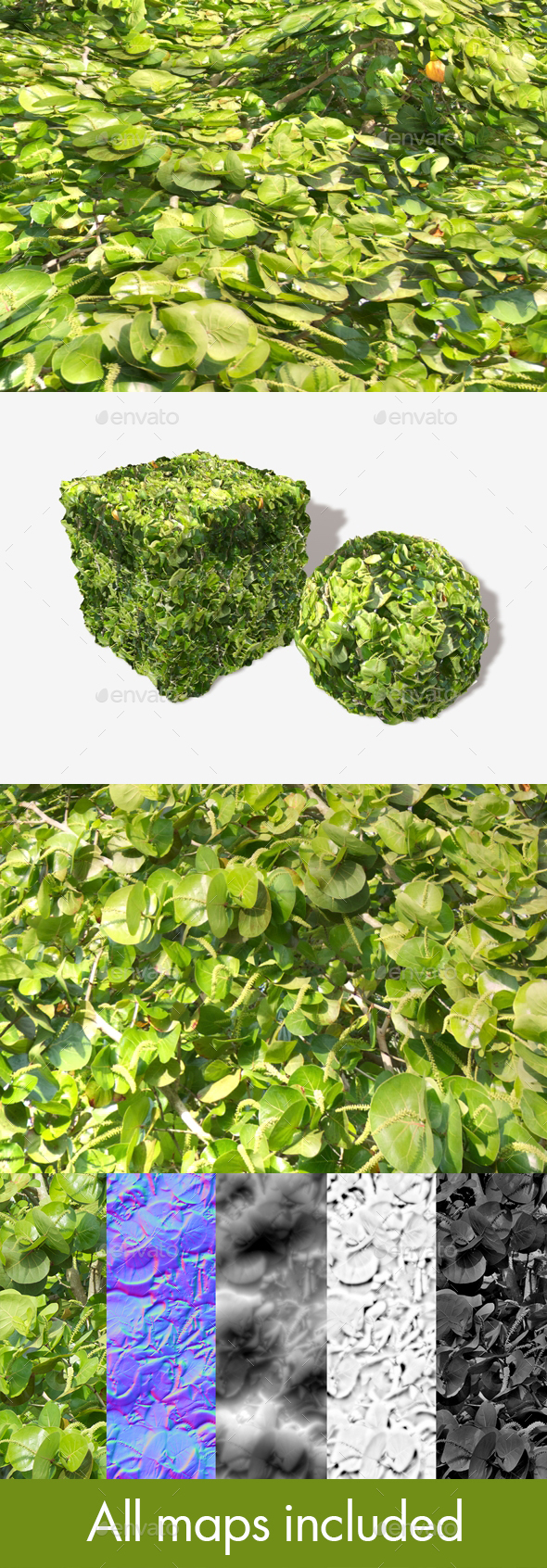 3DOcean Jungle Shrubbery Seamless Texture 19746660