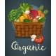 Basket Of Fresh Vegetables Poster