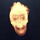 Skull Logo Reveal
