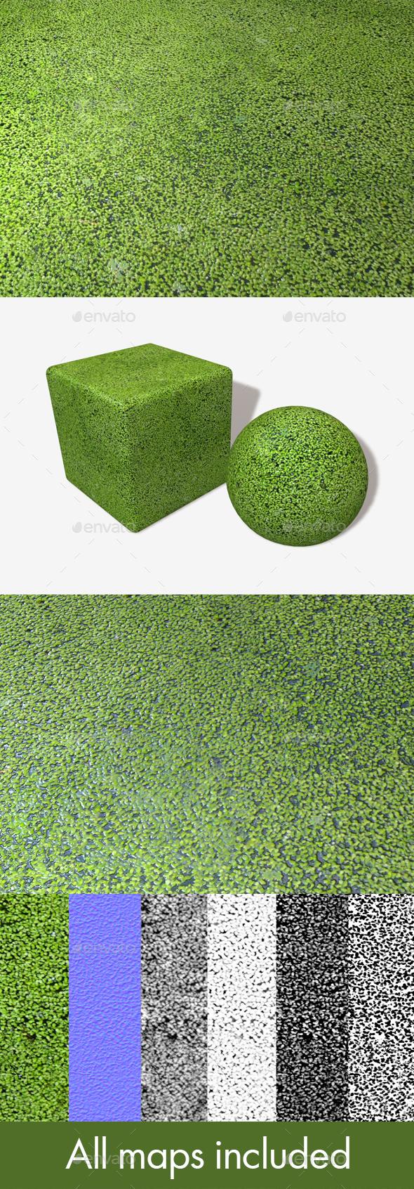 3DOcean Pond Weeds Seamless Texture 19783188