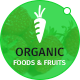Organic Foods and Fruits PSD Template