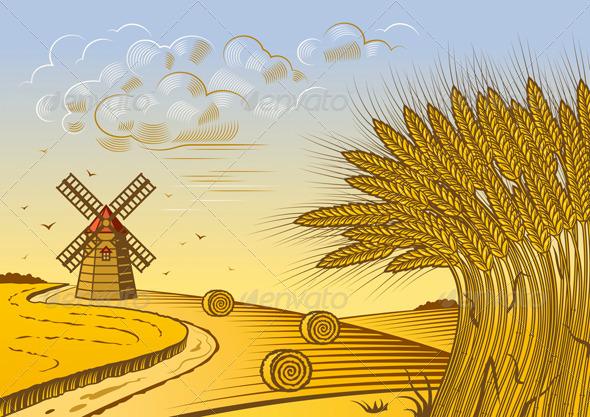 Wheat Fields Landscape Graphicriver