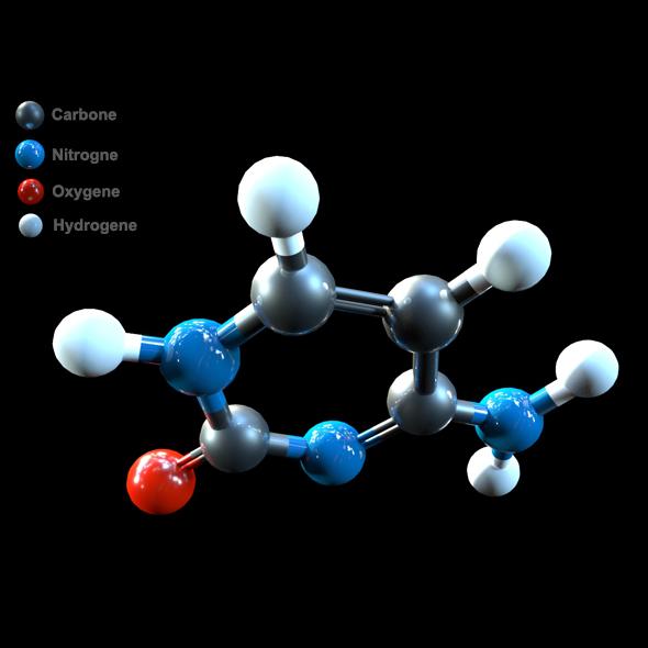 DNA Cytosine - 3DOcean Item for Sale