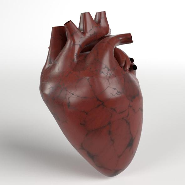 Anatomy - Human Heart - 3DOcean Item for Sale
