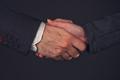 Businessman and businesswoman handshake in office