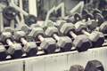 Dumbbell weights in the gym