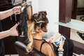 Woman looking at smartphone while getting a hairstyle