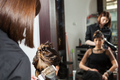 Woman getting a hairstyle in the salon