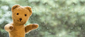 Happy toy bear