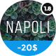 Napoli - современная тема портфолио фотографии на WordPress
