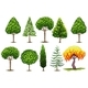 Set of Different Types of Trees