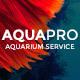 AquaPro | Aquarium Services & Online Store
