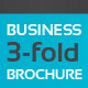 Business 3-Fold Brochure - Multi Color II - GraphicRiver Item for Sale