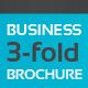 Business 3-Fold Brochure - Multi Color II