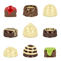 Nine different types of chocolate candies on white