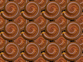 Millipedes worms coiled closeup