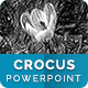 Crocus – Multipurpose PowerPoint Template
