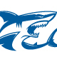 Shark Logo