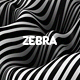 Zebra Stripes Texture Backg-Graphicriver中文最全的素材分享平台
