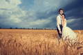 Gorgeous bride and groom in wheat field