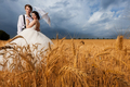 Beautiful bride and groom in wheat field